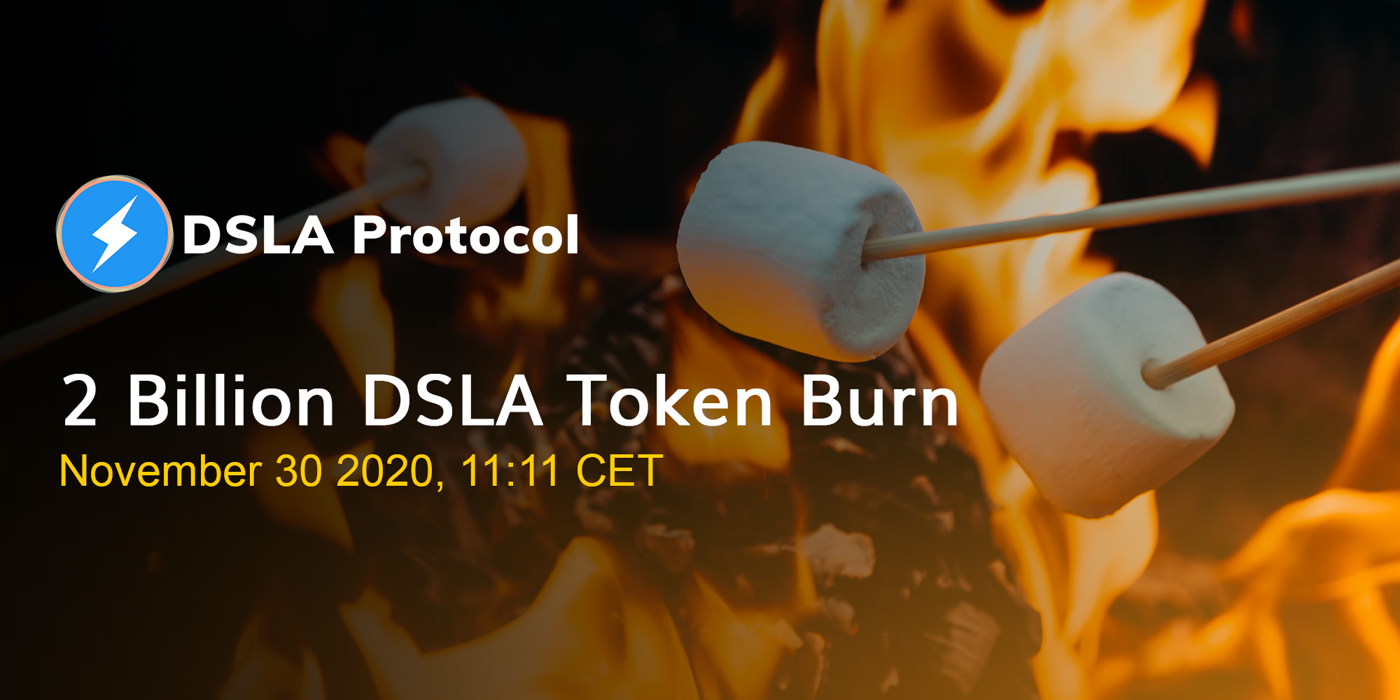 2 Billion DSLA Token Burn Event